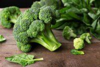 √ 5 Cara Menanam Brokoli Terlengkap