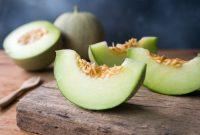 √ 5 Cara Menanam Buah Melon Terlengkap